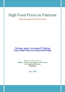 Food-Crisis-UN-joint-Final-report-2008
