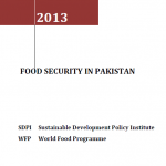 Food Security in Pakistan (2013)